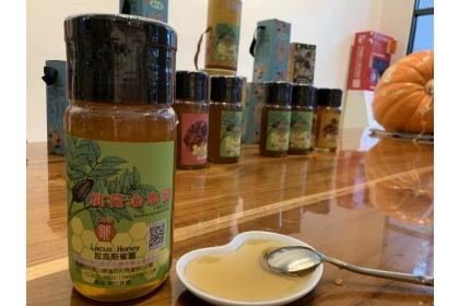 中興大學新化林場首批桃花心木蜜上市了。記者吳淑玲/攝影