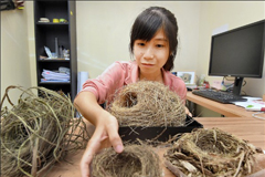 Bird nest's impact on the evolution of bird species- female college student's research article has made it to the international journal