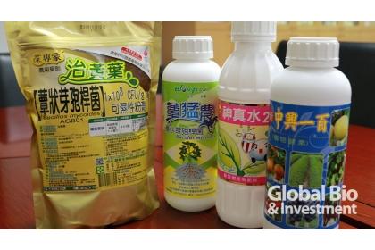 【環球月刊】「蕈狀芽孢桿菌」已經分別技轉給國內6家廠商,包括:聯發生技、興農等。