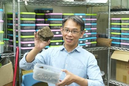 中興大學昆蟲學系教授李後鋒是全台灣最瞭解白蟻的專家。(攝影/楊語芸)