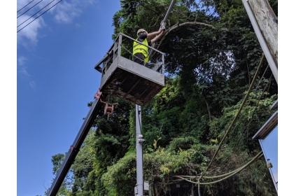 中興大學團隊在三米高空中安裝AI自動化動物辨識系統。圖片提供/中興大學機械系