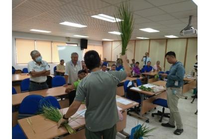 中興大學植物教學醫院駐診醫師陳興宗老師與農友討論水稻栽培管理技術。