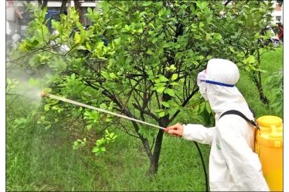 【自由時報】專門替農作物看診的「植物醫師」將被納入國考。