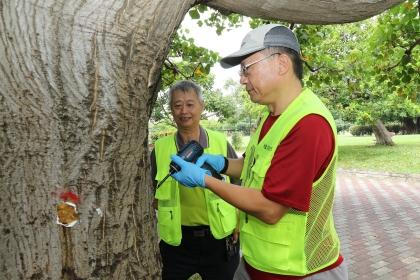 興大農推中心顏志恒副研究員(右)與興大植物教學醫院院長唐立正(左)示範防治步驟