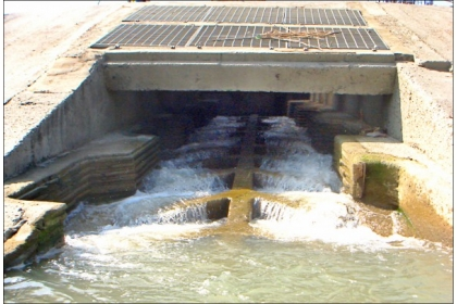 【自由時報】新竹頭前溪目前也有興大等研究團隊設計的「魚骨型魚道」。 (圖:中興大學提供)