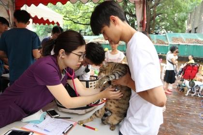 興大有機農夫市集11週年慶,由興大獸醫教學醫院進行犬貓義診。