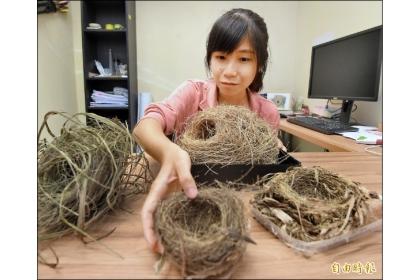 二十一歲女大生方怡婷登上國際期刊,鳥巢研究新突破。(記者簡惠茹攝)