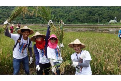 【聯合報】中興大學來自尼加拉瓜、泰國、印尼、越南及本地學生組國際隊伍,在鯉魚社區駐村,與當地居民攜手生態調查,也一起下田體驗割稻。記者劉星君/攝影