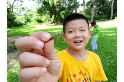 新化林場生態豐富,小朋友進行生態觀察課程。記者吳淑玲/攝影