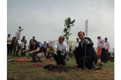 種樹需符合「適地適種」原則。圖/聯合報系資料照片