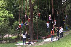 【公關組】惠蓀林場「2018暑假森林探索營」  開始報名