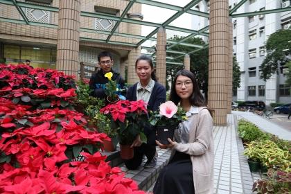 中興大學「攀朵拉」園藝週登場 展出附生植物