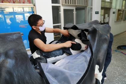 Department of Veterinary Medicine of National Chung Hsing University Introduces Simulation Dairy Cow of Real Scale to Assist Clinical Teaching