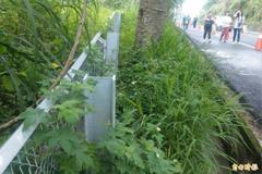 【媒體報導】保護石虎 ! 台3線「路殺預警系統」上路