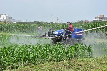 坐式防鋤機在有機農田的操作。(明道大學提供)