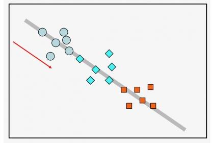線上穿越調查(灰色條帶)遇到的物種個體先後順序(如箭號方向所示),不同物種以不同符號或顏色表示
