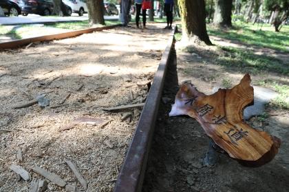 興大健康步道10月20日啟用,黑森林區步道舖滿來自惠蓀林場的木屑