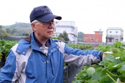 中興大學植病系教授曾德賜退而不休,奔走農園協助農民,並推動植物醫師制度(攝影/蔡佳珊)