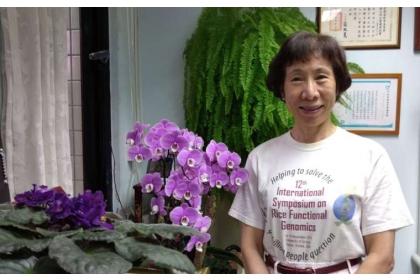 余淑美,中央研究院院士、分子生物研究所特聘研究員,以研究水稻基因而聞名,在學界素有「水稻教母」之譽。 圖片來源│余淑美