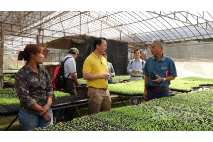 在駐泰代表處牽線下,中興大學國際產學聯盟和農委會農業試驗所14和15日拜訪泰國天賜農場,希望繼10多年前的合作後,再度為台灣和天賜農場搭起合作橋梁。圖為參訪天賜農場種苗場。(資料照片)