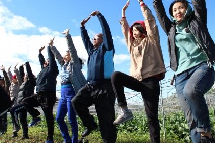 健康草地瑜珈活動