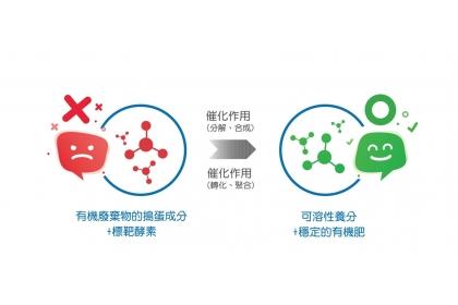 圖三:有機廢棄物中會引起作物生長燒根的搗蛋成分,經由TTT®專利標靶酵素分解、合成、轉化及聚合等作用,快速達到除臭、毒物質降解,同時於80℃(至少30分鐘)將大部份病原菌、蟲卵及草籽滅活等效果,3小時內產出穩定且優質之有機肥或土壤改良劑。