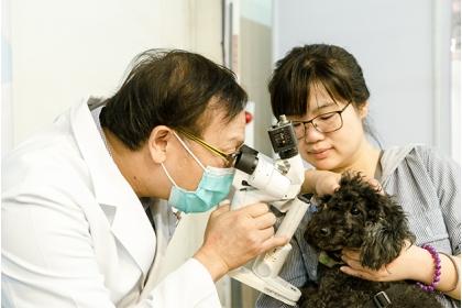 林荀龍(左)帶領學生前往偏鄉為犬貓義診。圖片來源/興大獸醫系USR計劃