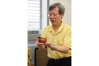 【聯合報】中興大學、成大及台北醫學大學合作研究,紫砂與失泥壺泡烏龍最好喝,香氣足、苦味少。圖/中興大學提供