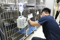 【媒體報導】全台首座流浪犬貓醫療室 中興大學創舉
