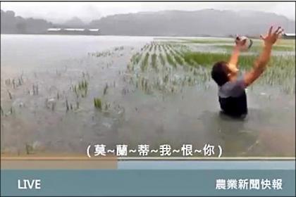 【自由時報】花蓮農民謝銘鍵的稻田出現劃分水利會灌區內外的「一田兩制」,灌區外農田淹水無處求助,一度只能拍影片自嘲喊苦。(資料照,記者花孟璟翻攝)