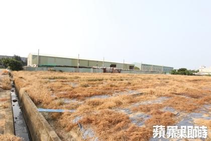 學者憂心農地違章工廠的空污問題。資料照片