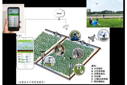 水稻智能栽培體系示意圖。(圖片來源:中興大學農藝系)