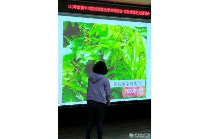 興大植物教學醫院與太平區農會配合 辦理荔枝病蟲害管理講習