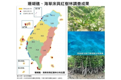 珊瑚礁、海草床、紅樹林調查成果。(圖取自海洋保育網官網)