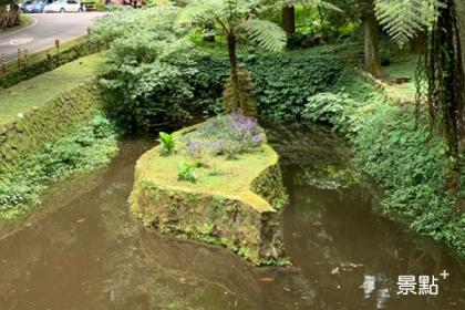 溪頭森林遊樂園區內通往大學池的路上,有台灣形狀的島座在水池中。(圖/cheriechang1217)