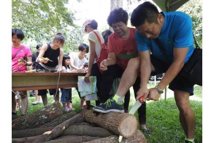 「惠蓀木文化節」今登場,假日則有闖關遊戲和攀樹活動等,供遊客免費體驗。