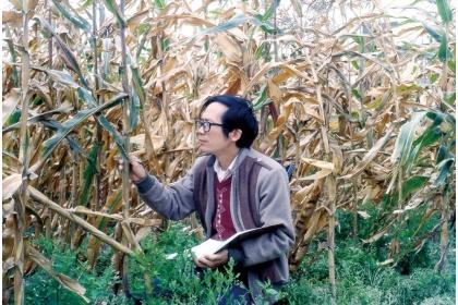 黃振文年輕時就投入非化學農藥病害防治研究,迄今已四十餘年。(圖片提供/黃振文)