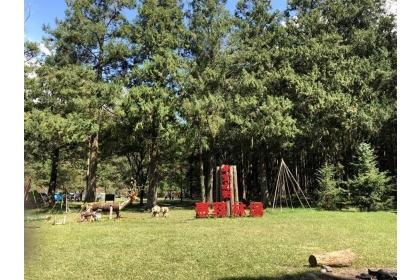 中興大學實驗林管理處,9月21至29日在南投縣仁愛鄉的惠蓀林場,舉辦「惠蓀木文化節」。圖為惠蓀林場的希望之樹。
