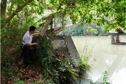 中興大學新化林場沖瀜池是民國78年水保局前身山地農牧局闢建的農塘。記者吳淑玲/攝影