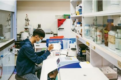嘉義大學植物醫學系的學生在實驗裡專注檢測植物病害因子。(攝影/黃毛)