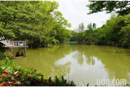 中興大學新化林場沖瀜池不受乾旱影響,蓄水滿滿,也是導演魏德盛將開拍的台灣三部曲碼頭場景。記者吳淑玲/攝影