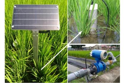 導入太陽能水位計、電子流量計等田間感測設備。(圖片來源:農試所提供)