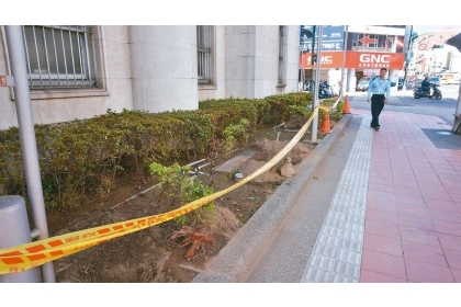 彰銀舊總行屬市定古蹟,外牆的椰子樹成排被砍,留下偌大樹穴。 記者洪敬浤/攝影